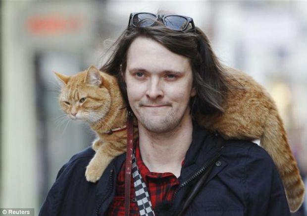 имя коту: