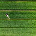 public://uploads/photos/luchshie-fotografii-s-vysoty-iz-socialnoj-seti-dronestagram-2015-goda-17.jpg