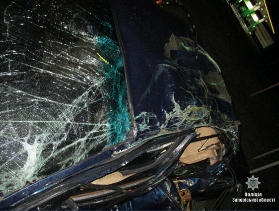 На запорожской трассе погиб мужчина (ФОТО)