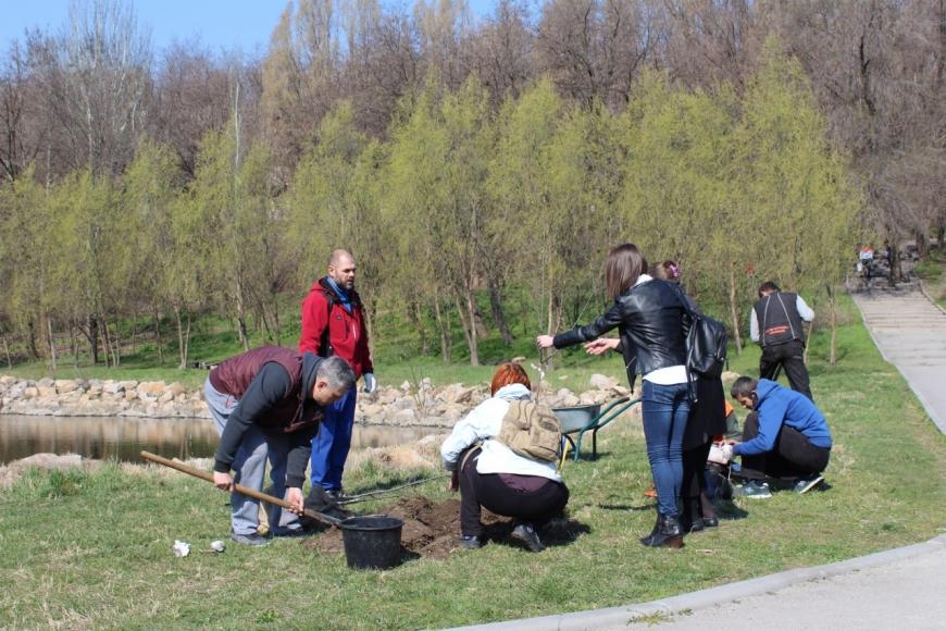 Запорожцы высадили новые деревья и убрали Парк Победы